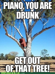 funny piano you are drunk get out of the tree caption picture