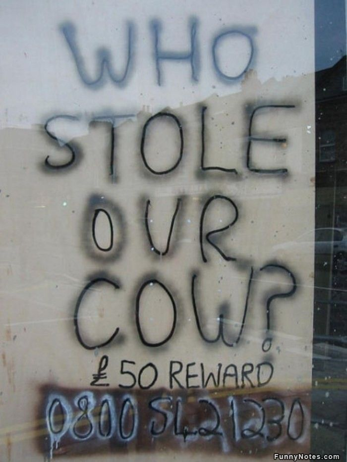 funny who stole our cow note