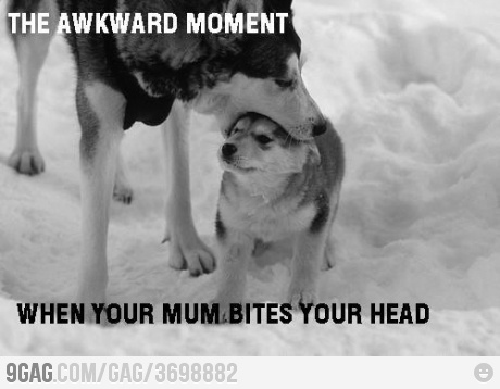 funny awkward moment caption picture