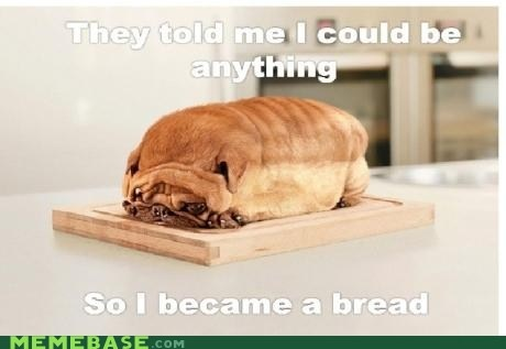 Funny They Said i could be anything so I became a bread pug picture
