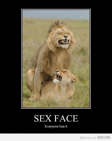 Funny sexual demotivational posters