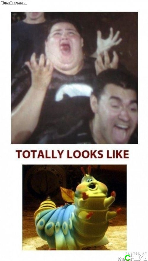 Funny totally looks like bugs life