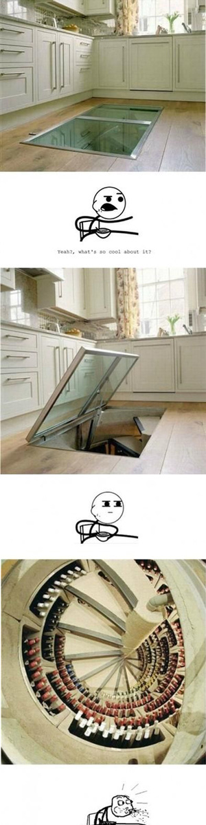 awesome wine cellar hidden in kitchen floor