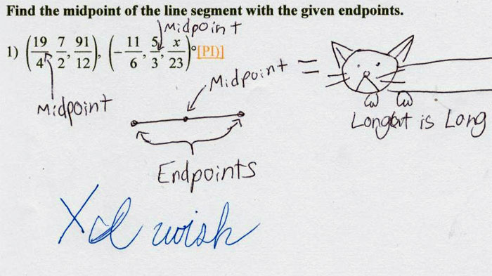midpoint endpoint long cat is long funny test answer funny exam answer