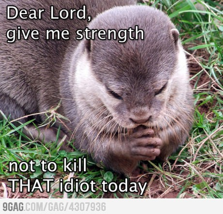 funny dear otter dear Lord give me the strength not to kill this idiot caption