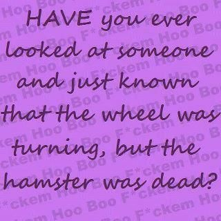 funny the wheel was turning but the hamster was dead funny quote