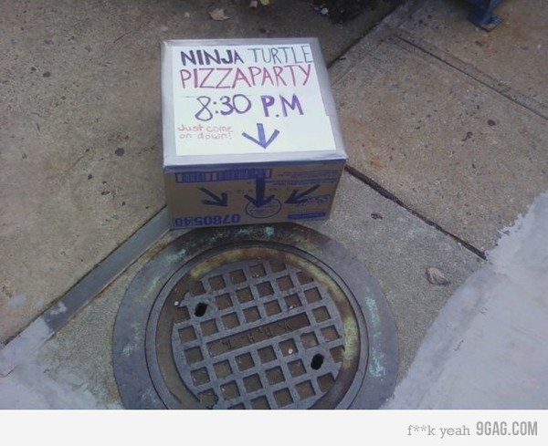 funny ninja turtle pizza party sewer cap photo