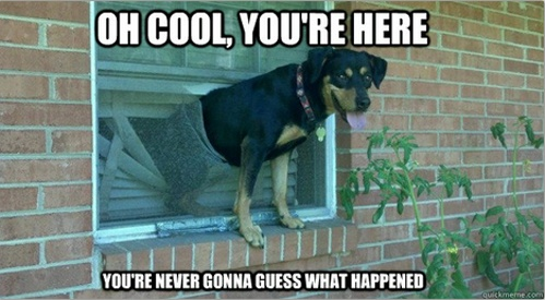 funny oh cool your home your never gonna guess what happened