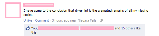 funny dryer lint is cremated socks facebook status