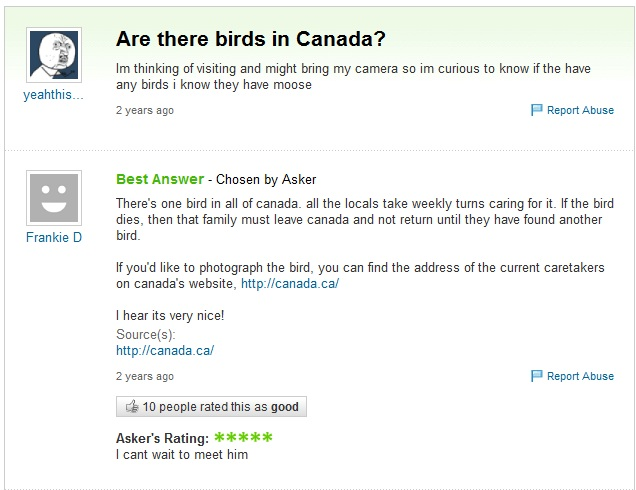 funny questions - are there birds in Canada