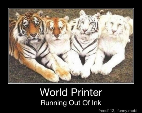 funny world printer running out of ink funny tiger picture photo caption