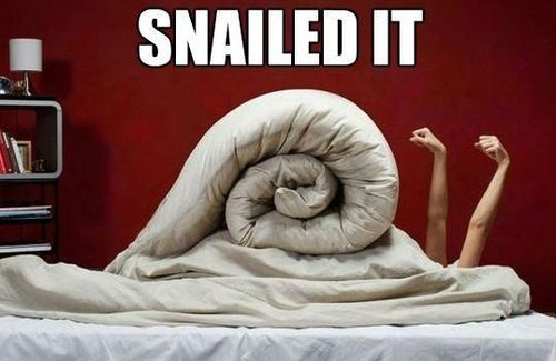 funny snailed it woman rolled in blanket with arm out looks like snail picture