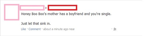 funny facebook status honey boo boos mom has a boyfriend and you are alone let that sink in