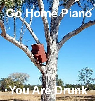 funny go home piano you are drunk caption pictures