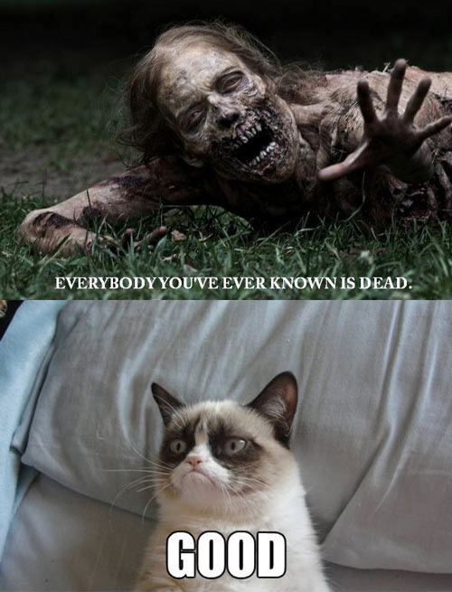 funny caption picture everybody you have ever known is dead good man cat meme
