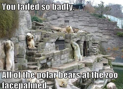 funny caption picture you failed so badly all the polar bears facepalmed