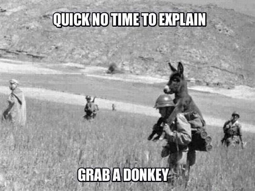 funny caption picture quick no time to explain grab a donkey