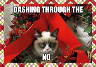 funny angry christmas cat meme dashing through the snow no