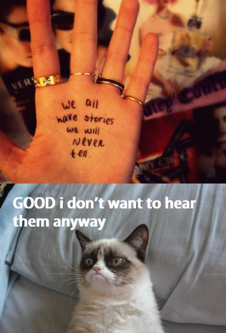 funny angry cat caption good i don't want to hear them anyway