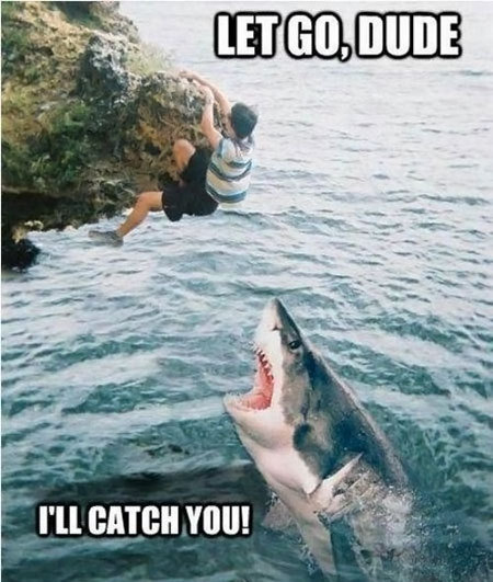 funny caption photo guy hanging from cliff don't worry dude i'll catch you shark