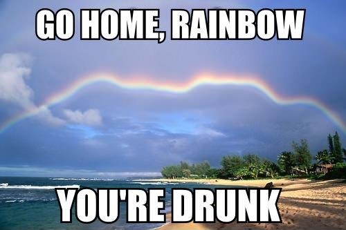 funny go home rainbow you are drunk you're drunk