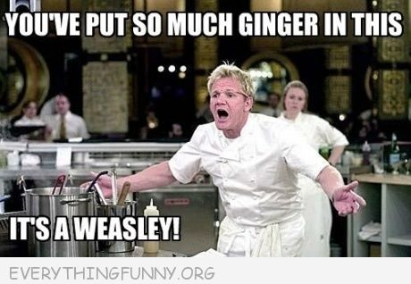 funny gordon ramsey meme so much ginger it's a weasley