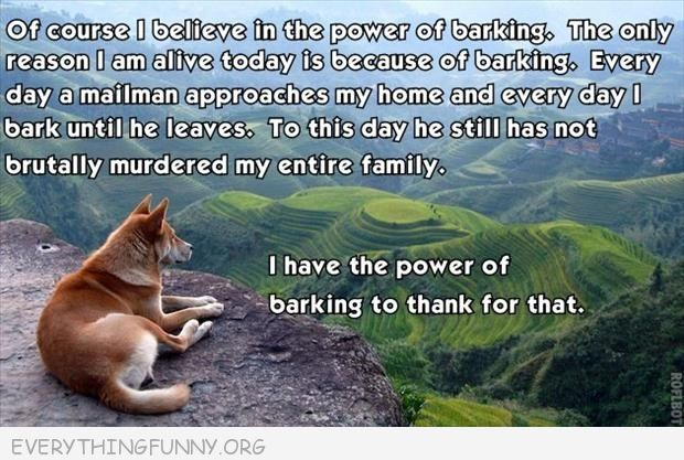 funny caption dog barking bark at mailman every day family still alive