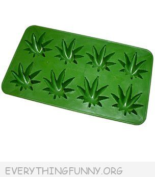 funny marijuana pot leaf shaped ice cubes