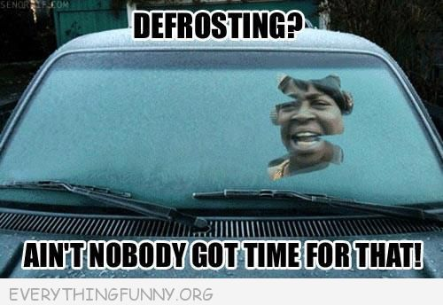 funny defrosting ain't nobody got time for that meme