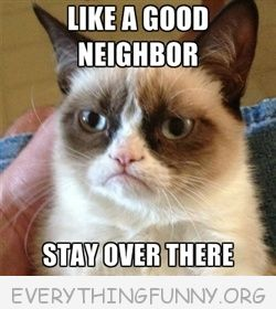 grumpy cat meme picture like a good neighbor stay over there