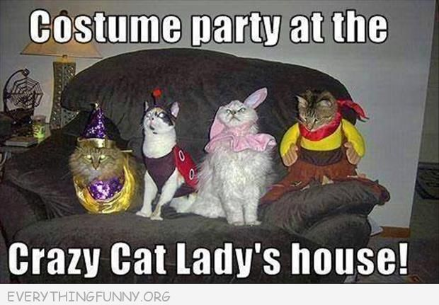 funny crazy cat lady cat costumes