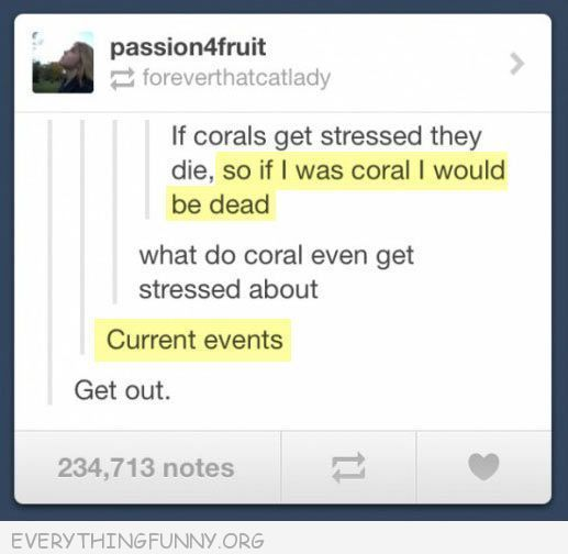 funniest tumblr text post coral depressed current events