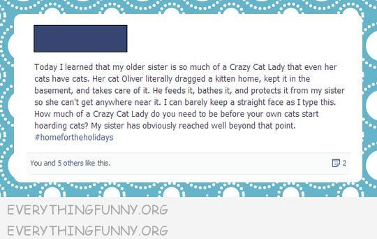 funny tumblr text post cat lady