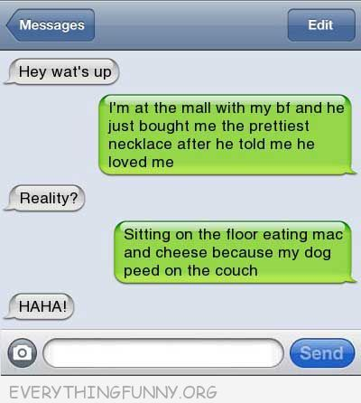 funny text message what are you doing reality sitting on floor dog peed on couch