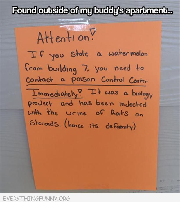 funny notes stole watermelon science experiment rates urine