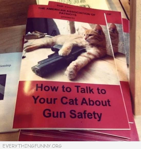funny cap pictures how to talk to your cat about gun safety
