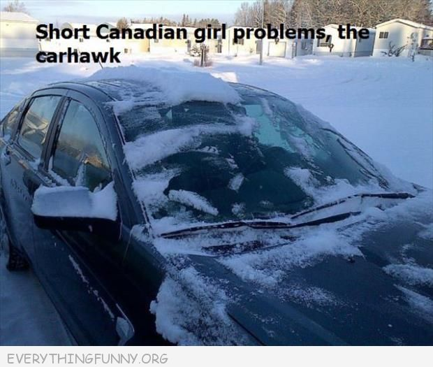 funny short canadian girl problems car hawk