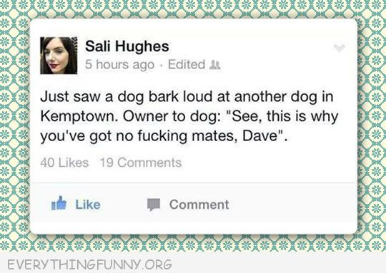 funny facebook status dog barks at another dog owner says this is why you don't have no mates Dave