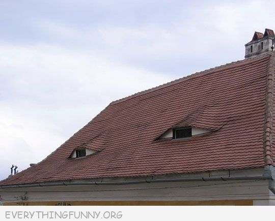 funny suspicious house picture