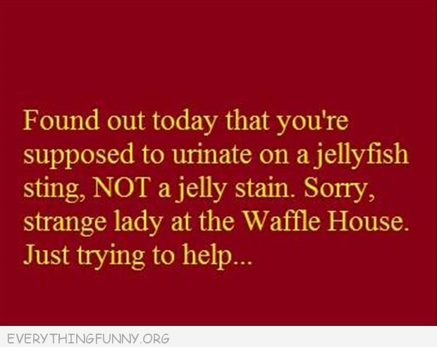 funny qutoe pee on a jelly fish sting not jelly stain sorry lady at waffle house