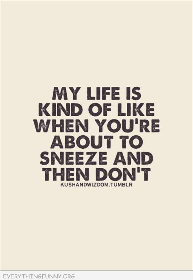 funny quote my life is kind of like when you're about to sneeze and don't