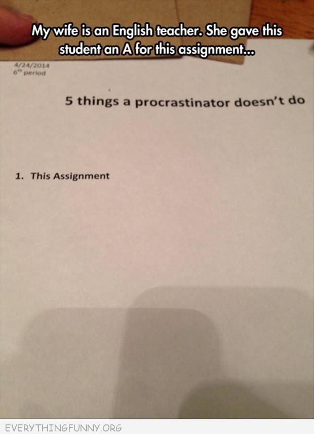funny test answers 5 things porcrastinators don't do this assignment