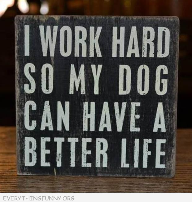 funny sign house decor i work hard so my dog can have a better life