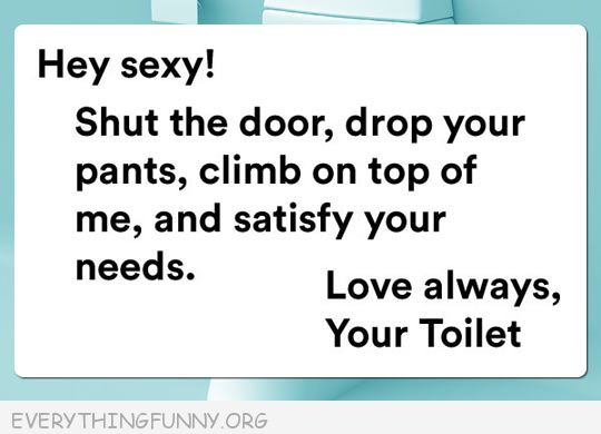 funny quotes hey sexy shut the door drop your pants climb on top and satisfy your needs love your toilet