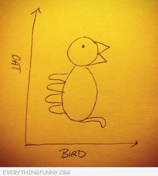 funny cartoon drawing bird cat depending on which way you look at it