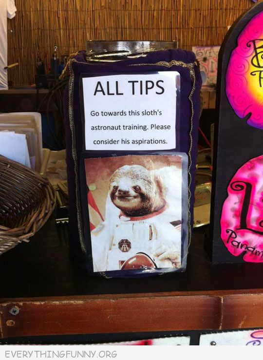 funny tip jar sign all tips go to sloth astronaut training