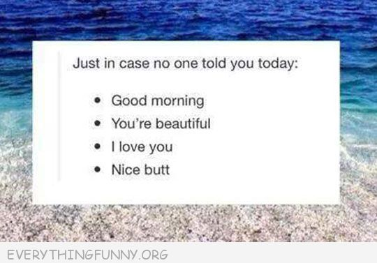 funny quote in case no one told you today good morning you're beautiful nice butt