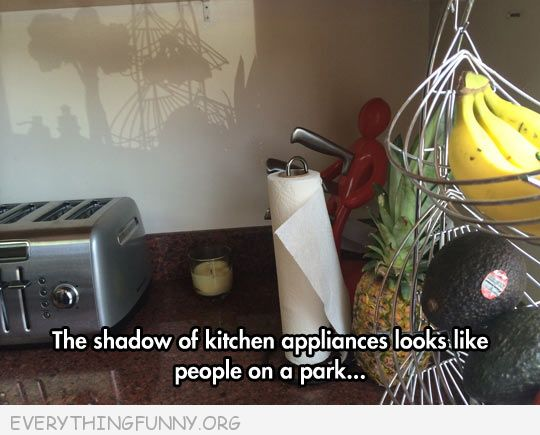 funny caption shadow kitchen applicanes leaves amusement park shadow