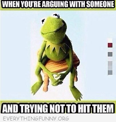 funny caption kermit when ou are arguing with someone and trying not to hit them