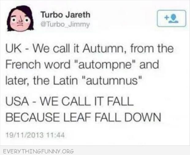 funny twitter we call it fall because leaf fall down